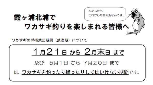 IMG20130120231428