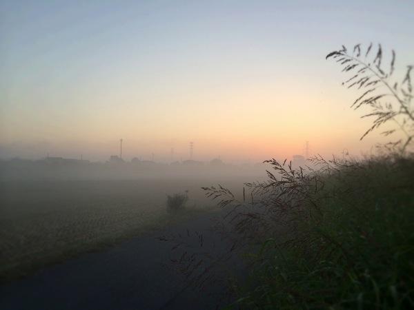 朝靄立ち〜の 日が昇り〜の そして…【2013/10/12釣行】