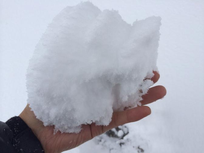 2014年2月8日 積もった雪