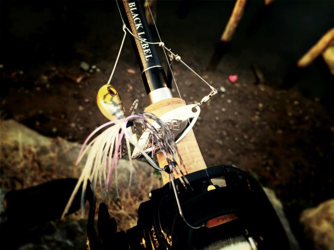 2014年3月30日釣行 朝イチはスピナーベイト レベルスピン #稚ギル