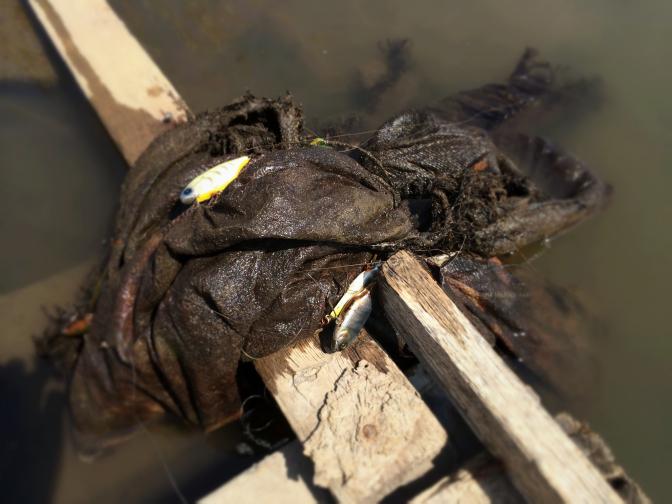 釣り上げた土のう 根がかりしたルアーが鈴なり状態