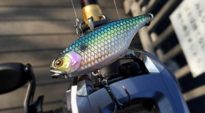 2015年1月4日釣行 初釣行はTN60から!