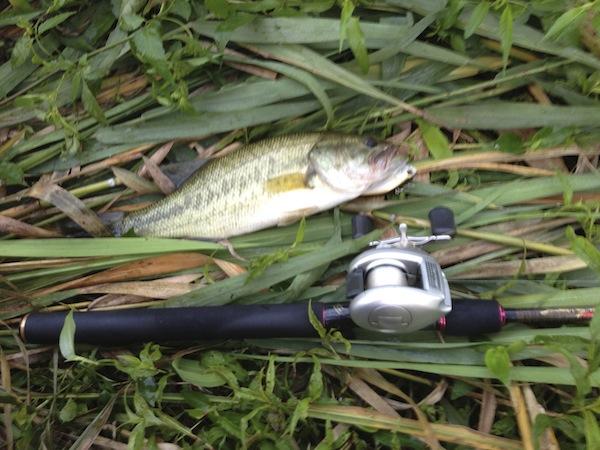 catch_201309090543