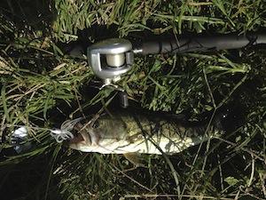 catch_201309260700